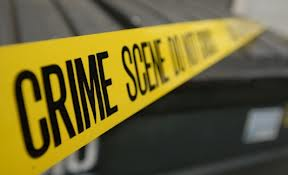 jobs with degree in criminology