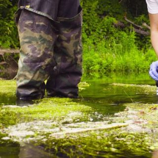 Jobs & Professions with Degree in Environmental Sciences