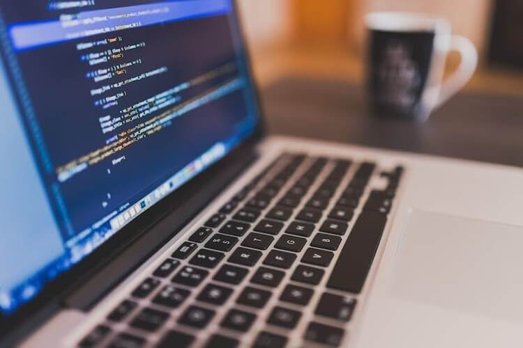 Career Check; What Does a Software Developer Do?